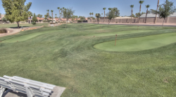Palo Verde Country Club in Sun Lakes AZ